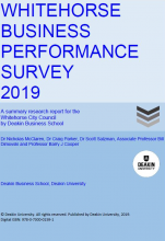 Business Performance Survey Full Report